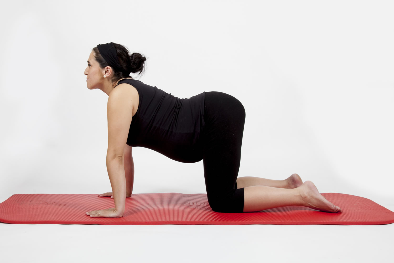 asanas del yoga para el embarazo