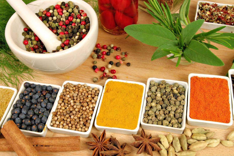 india y salud
