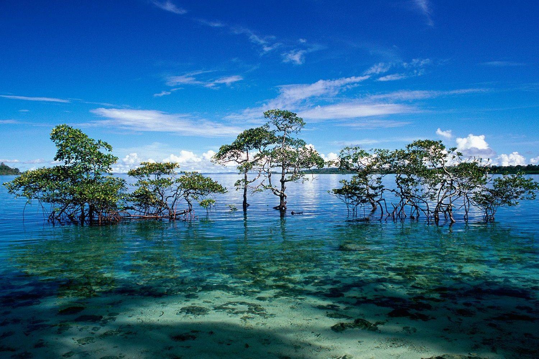archipiélagos de Andamar y Nicobar